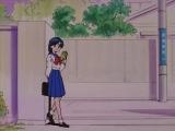 Сейлормун. 2-й сезон (Sailor Moon R) 09. Любовь - это...